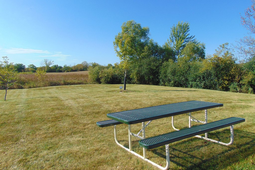 Copperfield Park Picnic Table